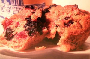 Cranberry-Blueberry Muffins